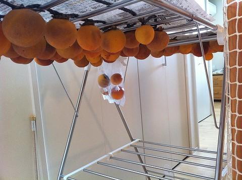 自宅で極上の干し柿