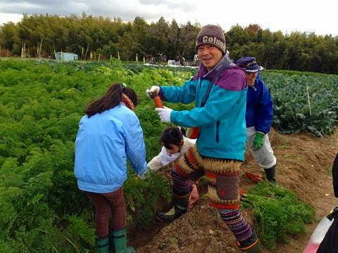 相生山にある畑で収獲