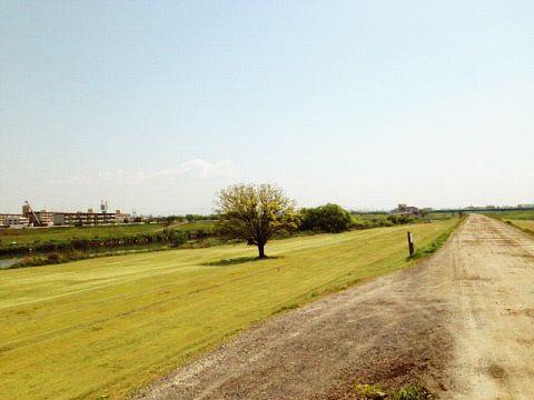 河川敷のゴルフコース