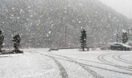 郡上の牡丹雪とビアバル