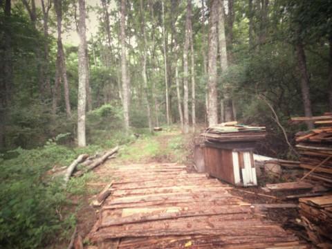森の家.jpg