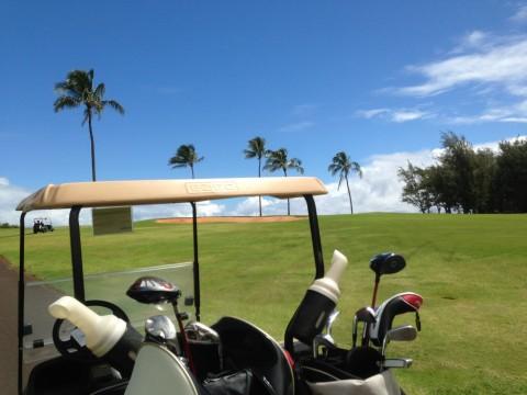 画像 hawaii37 (90).jpg