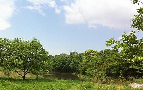 翠松園フォト.jpg