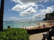 画像 hawaii37 (1).jpg
