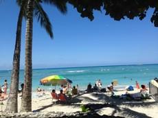 画像 hawaii37 (25).jpg