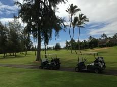 画像 hawaii37 (88).jpg