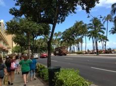 hawaii48 (4).jpg