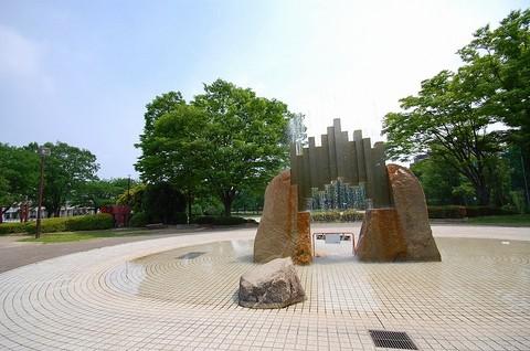 DSC_0826aoiro.jpg