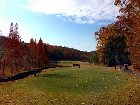 golf1 008.jpg