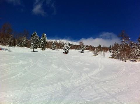 スキー熱再来の予感
