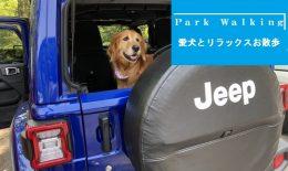 愛犬と森林浴ドライブ